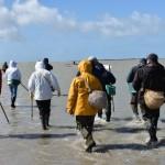 <b>Vigilances grandes marées : appel à la prudence dans la Manche</b>