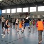 <b>Basket : les pros de l'Hermine de Nantes à Vallet</b>