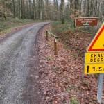 <b>Ecouves : une route forestière fermée, une maison en vente</b>