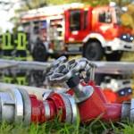 <b>Une longère ravagée par un incendie à Bignan</b>
