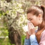 <b>Allergies au pollen : le risque est élevé en Vendée et dans le Maine-et-Loire</b>