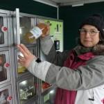 <b>Insolite. Un distributeur de pommes installé dans une ferme du Cotentin</b>