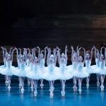 <b>Le Lac des Cygnes, cet opéra sans paroles à la brillante orchestration</b>