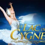 <b>Le Lac des cygnes ce dimanche à Toulouse !</b>