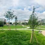 <b>Destiné à l'origine à un promoteur, un terrain devient finalement un jardin public à Toulouse</b>