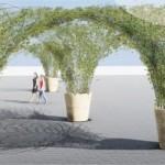 <b>Toulouse. Des parasols végétaux hi-tech vont bientôt rafraîchir le quartier Saint-Cyprien</b>