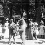 <b>L'ours : du roi des animaux à la réintroduction contestée</b>