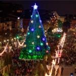 <b>Illuminations, marchés de Noël, gastronomie locale... que faire à Toulouse, dimanche</b>