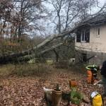 <b>En images. Cheminée qui tombe, toit qui s'envole… La tempête fait des dégâts à Toulouse et auto...</b>