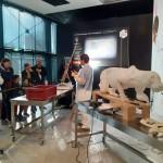 <b>Toulouse. Rendez-vous au Muséum pour suivre en direct la naturalisation d'un jaguar</b>