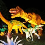 <b>En images. L'énorme succès du Festival des Lanternes de Gaillac, près de Toulouse</b>