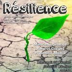 <b>Résilience</b>