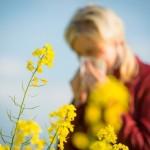 <b>Allergies au pollen : Toulouse et la Haute-Garonne passent en niveau d'alerte orange</b>