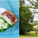 <b>La Promenade : le fameux restaurant étoilé fait peau neuve à Verfeil !</b>