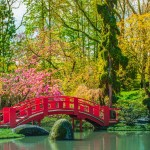 <b>Les plus beaux jardins de Toulouse</b>