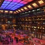 <b>Confinement : Visitez le Musée d'Histoire Naturelle depuis chez vous !</b>