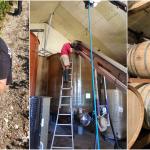 <b>Ces Brasseurs Toulousains imaginent une Bière à base de Vin !</b>