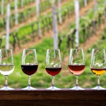 <b>Alerte Job de Rêve : Gagnez 8500€ par mois pour tester du Vin & vivre dans un Vignoble !</b>